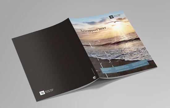 Forside design til NSE årsrapport